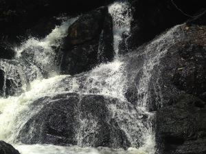 Khao Yai National Park